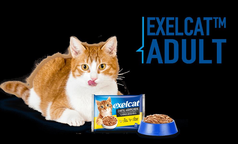 Exelcat Adult Produkte