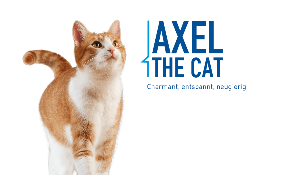 Axel the Cat