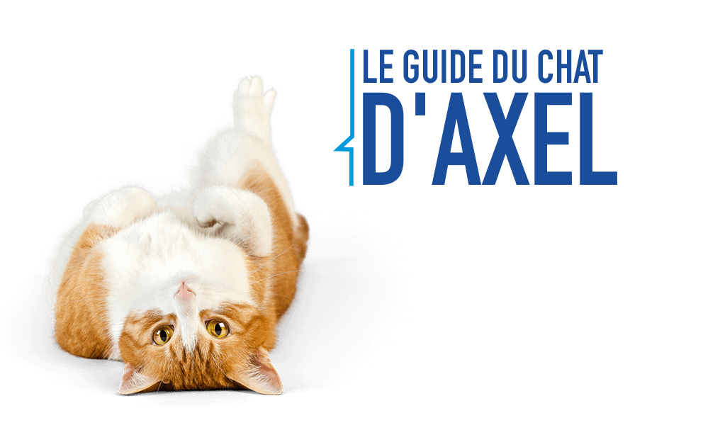 Le guide du chat dAxel
