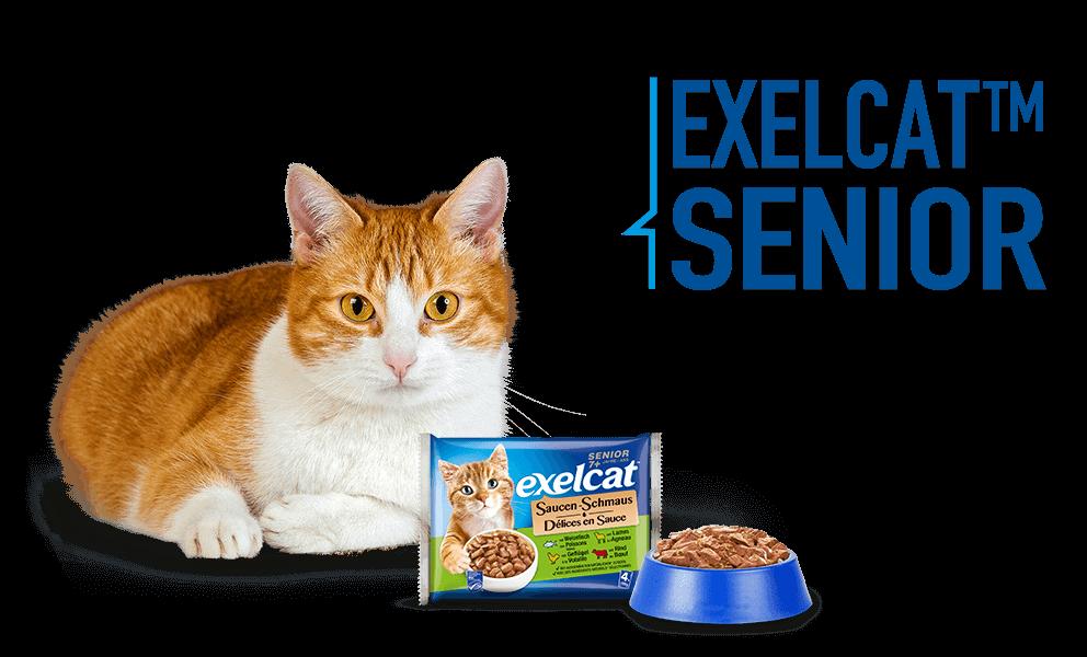 Exelcat Senior Produkte